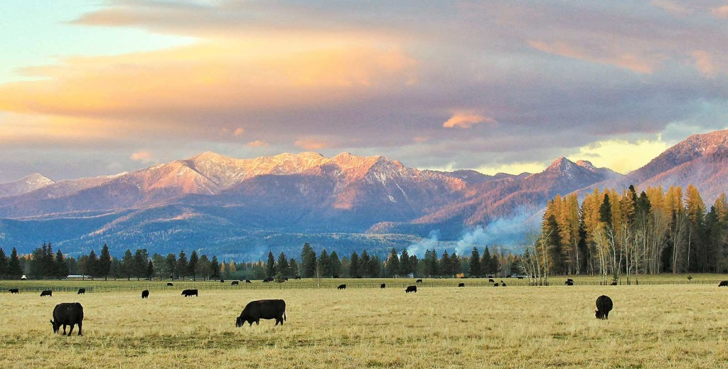 Montana-Ranch-Evening_Fall