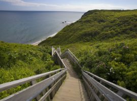 stairs-at-the-bluffs-mm